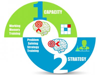 Capacity Strategy Training