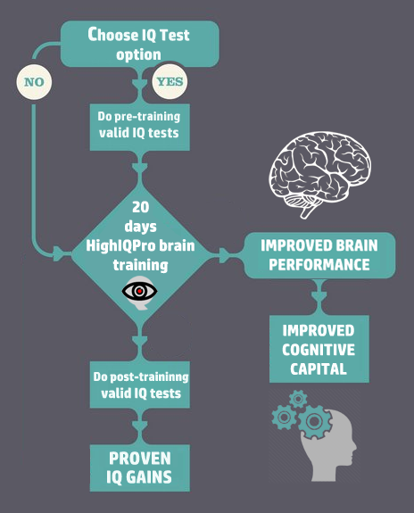 How high iq pro works for cognitive capital