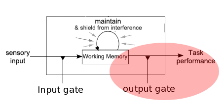 Gated Dual N-Back: Input and Output Gating