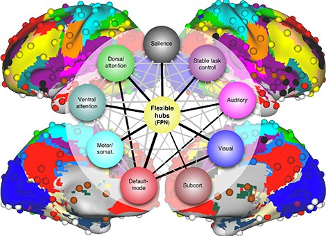 Latest N-Back Brain Training Studies: Effective Sleep and Training Synergy